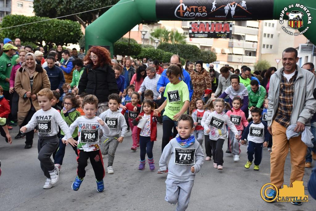 Antº M. Castillo ENE-2016 (358)