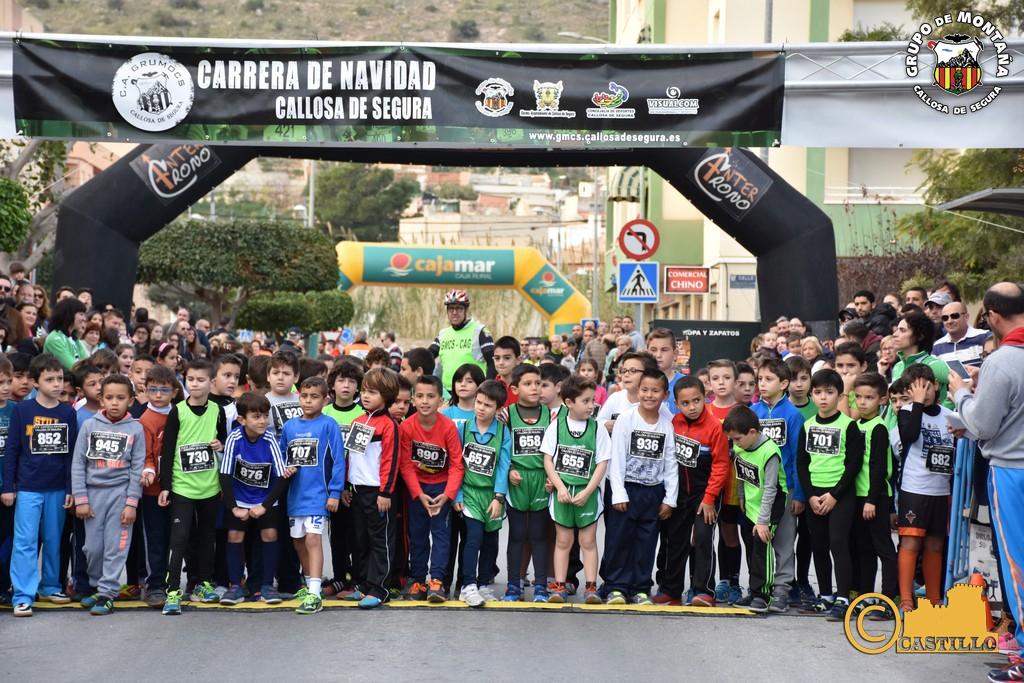 Antº M. Castillo ENE-2016 (391)
