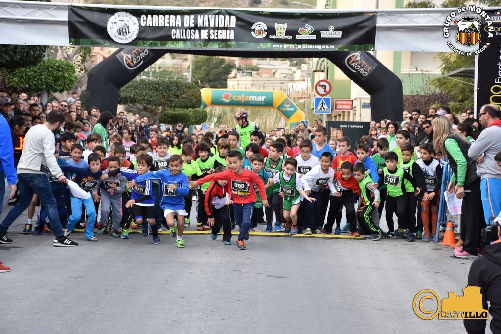 Antº M. Castillo ENE-2016 (393)